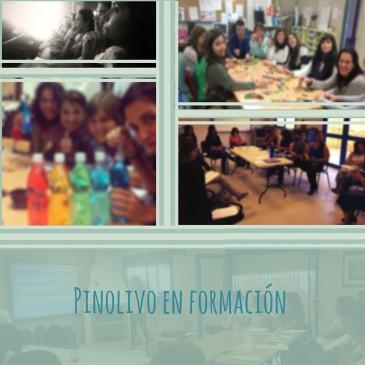 Mi blog y la formación en Pinolivo